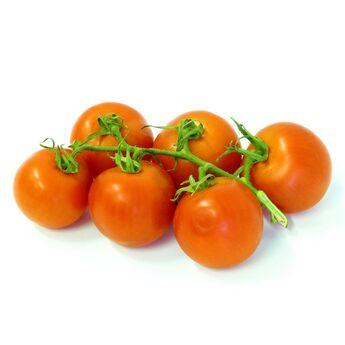 Meloun Galia