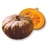 Čekankové puky bílé