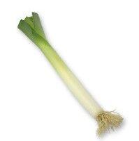 Rajčata kulatá