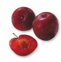 Jablka Royall Galla