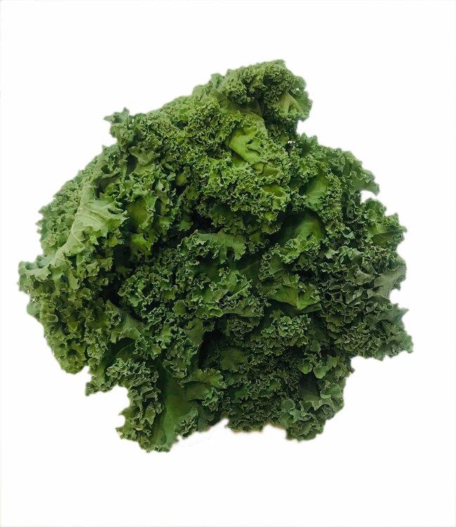 Meloun Cantaloupe krájený-na obj.